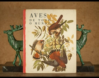 Birds from all over the world, Editorial verb Lisboa, text of E. Holsaert, Illustrations of A. Singer, J-G Irving and A-W Ryan, 1963, Vintage