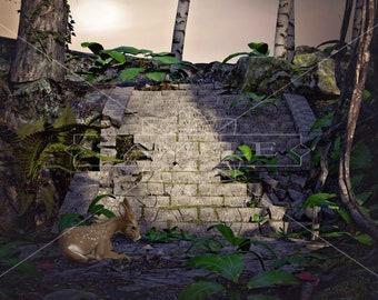 Secret Forest Digital Backdrop / Background, High Resolution, Instant Download. Buy 3 get 1 free.