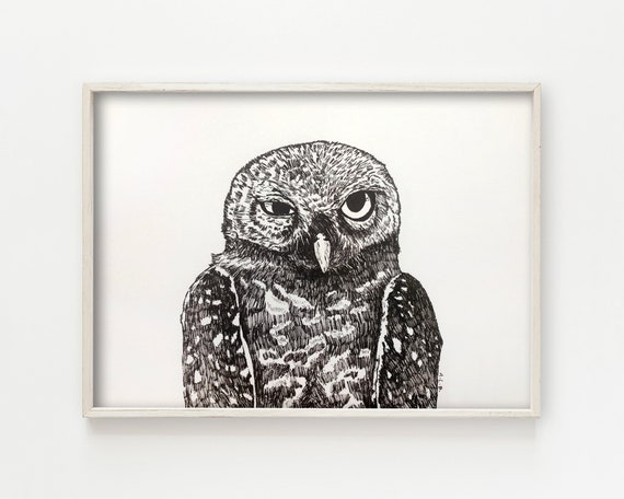 """Spotted Owl"" - original ink drawing"