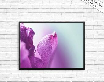 Flower Prints, Flower Wall Art, Purple flower art print, Floral Prints, Wall Prints, Flower, Art Prints, Purple Wall Art, Minimalist Poster