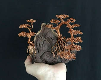 Dual Bonsai Wire Tree Sculpture