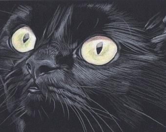 Poppy The Black Cat Original Mixed Media Painting, Cat Lover, Pet Portrait, Black Cat, Cat Profile, Cat Art, Cat Painting, Cat Illustration