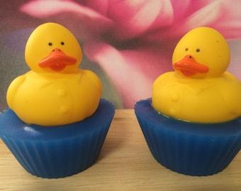 Ducks on Ponds