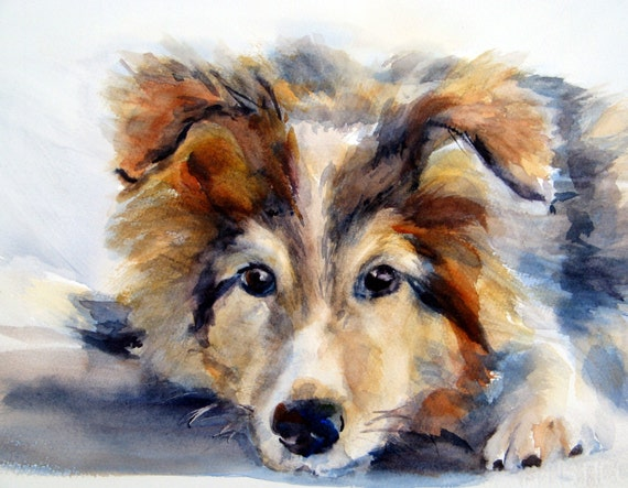 custom pet portrait - pet portrait - pet painting - Bonnie White artist - Bonnie White paintings - whitewatercolor - dog portrait