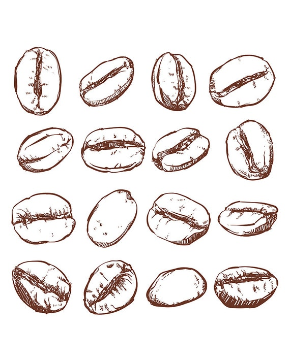 80 off sale coffee bean isolated hand drawn vector hand for How to draw a coffee bean