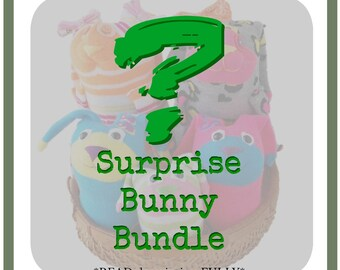 Surprise Bunny Plush Month Club - READ FULL DESCRIPTION - Bunny Plush, Subscription, Surprise Toy, Bunny Toy