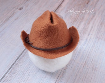 RTS felted cowboy hat newborn photo props