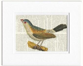 bird IV dictionary page print