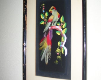 Mexican Feather Art Bird Feather Art Parrot Feather Art 60s Vintage