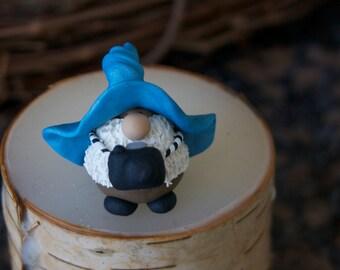 Mr. GNikon Photographer Gnome