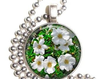 Cherokee Rose Art Pendant, Rosa Laevigata Photo Painting Resin Pendant, Silver Nickel Coin Charm Necklace
