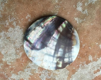 Antique Victorian Shell Button Coat Button Abalone Mother of Pearl