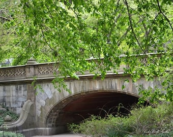 Central Park Photography, FREE SHIPPING, Central Park Bridge, New York Photography, Spring Photo, Tree Photography, Nature Print, Landscape