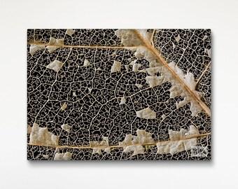 Leaf Decay Texture Canvas Print, Fine Art Photography, Texture Wall Art, Office Decor