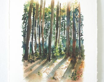 Dolly Sods forest shadow Watercolor Print - WV Landscape Print - Landscape Watercolor Illustration
