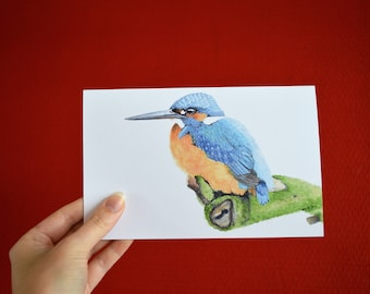 Folded postcard with envelope: print of original watercolor painting, Kingfisher.