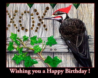 "Birthday card- ""Tell me Why?"""