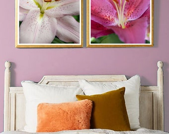 Up Close With a Lily Fine Art Photo Print