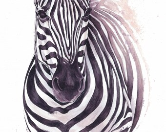 Reproduction on Canvas: Zebra - Wine Painting