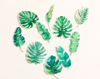 Edible double sided pre cut tropical palm leaves toppers. Monstera jungle. Rice wafer paper. Birthday wedding cupcakes toppers decorations