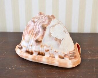 Vintage Carved Shell