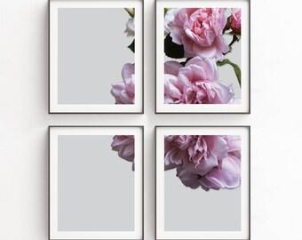 Botanical Print Set, Set of 4 Prints, Printable Art Set, Art Prints, Boho Deco,  Large Wall Art, Floral Art Poster, Large Floral Art