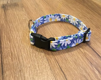 Cute summertime blue collar with white daisies