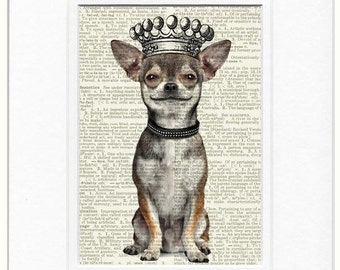 chihuahua, smiling and crowned print
