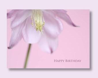 Flower Birthday Photo Card, Aquilegia Card, Flower Card, Floral Birthday Card, Pink Birthday Card, Greetings Card