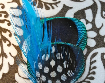 SERENA Peacock Mini Hair Clip