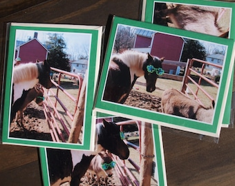 Cards St. Patrick's Day Set of 5 Sweet Pea and Donkey