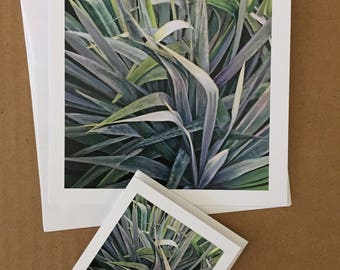 Silver Green Yucca Card