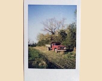 Tobacco Field - Instant Film Photo