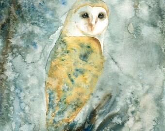 Barn owl Original watercolor painting 8x10inch