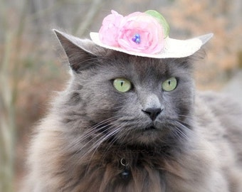 Cat Hat - Elegant Mini Hat - Spring Cat Hat - Spring Bonnet - Cat Bonnet- Kentucky Derby