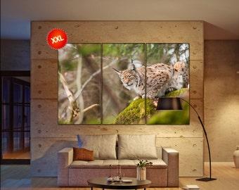 lynx  canvas wall art lynx wall decoration lynx canvas wall art art lynx large canvas wall art  wall decor
