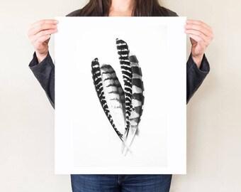 Feather still life, modern feather art, bird artwork. Monochrome feathers photograph, minimal home decor. Black and white plumage photograph