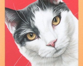 Custom Pet Portrait, 11x14 Handpainted Cat Painting, Holiday Gift for Cat Lovers, Realistic Custom Painting of Your Cat, White Cat Art