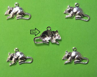 LOT 5 METALS CHARMS Silver: rat 16 mm