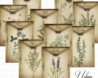Printable Dried Herb Envelope