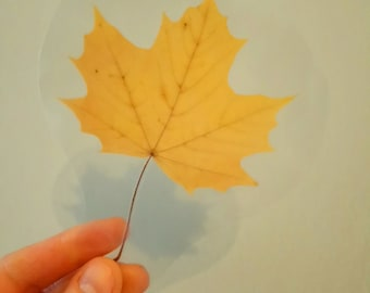 Yellow leaf bookmark