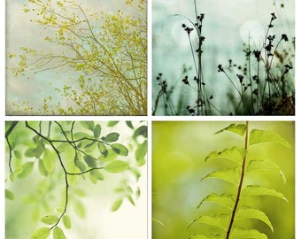 Trees and Fern Nature Photography Mini Collection, green blue brown baby nursery prints, vintage chic wall art - four 4x4 photos