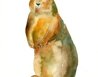 GROUNDHOG-8x10 print-Art Print-animal Watercolor Print-nursery decor-children art-home decor