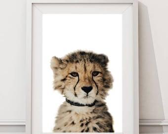 Baby Leopard Print, Leopard Cub Nursery Printable Art, Instant Download Large Art Print, Modern Nursery Art, African Animals Photo Art