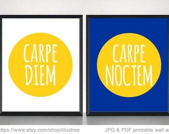Carpe diem, carpe noctem, digital art print set, printable wall art, 8x10 motivational print, inspirational quote, print set, PDF, download