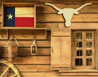 Texas Longhorns Wood Cutout Raw Shapes Sign