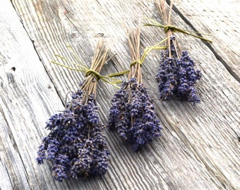 English Lavender Seed, Lavandula angustifolia Seeds, Fragrant Flower Garden, Grow Your Own Fresh Lavender