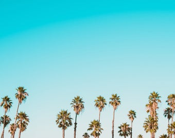 Palm Trees Against Blue Sky Art Print Wall Decor Image Detail Color - Unframed Poster