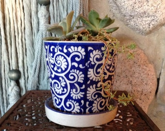 Floral Blue & White Ceramic pot LIVE PLANT, succulent, home decor,  house plant