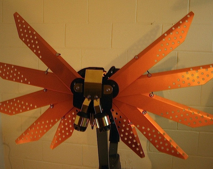 Powered Steampunk Wings